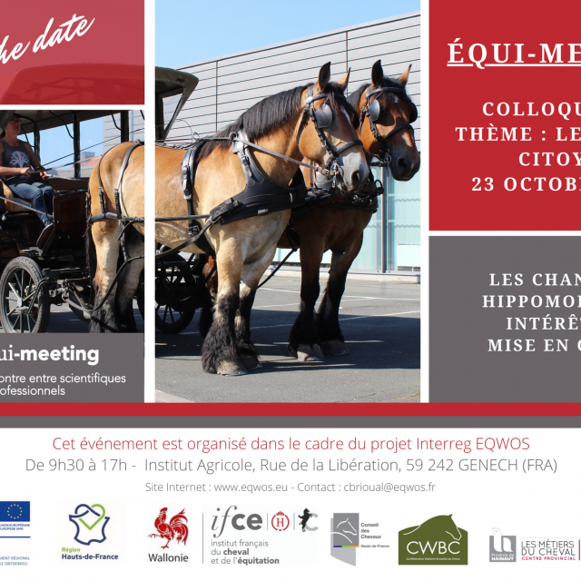 Save the date Equimeeting
